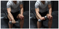 Seated One-Arm Dumbbell Palms-Down Wrist Curl